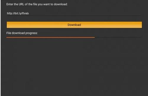 3rd step Installing showbox on firestick with Downloader App