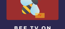How to Install Bee TV on FireStick 2019 (Easy Guide)