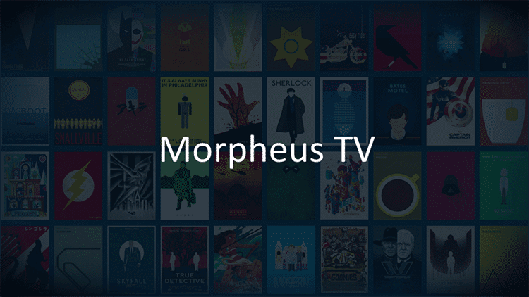 How-to-Access-Morpheus-TV-on-FireStick-Step-5
