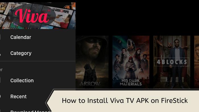 install-viva-tv-apk-on-firestick
